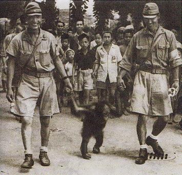 Dalam waktu senggangnya tentara Jepang juga menunjukan sifat manusiawinya seperti mengunjungi kebun binatang, Raden Saleh, Cikini, Jakarta