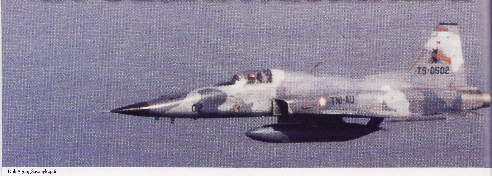 Pesawat termpur F-5E/F Tiger II bergabung dengan kekuatan Skadron